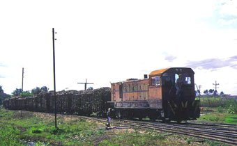 sugar cane train in Cuba
